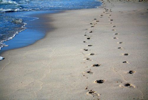 Spuren im Sand – Coaching und Natur